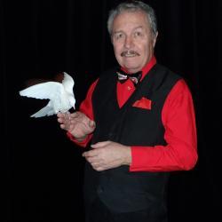 Kouzelnické představení - pro malé i velké, kouzelník Faustino